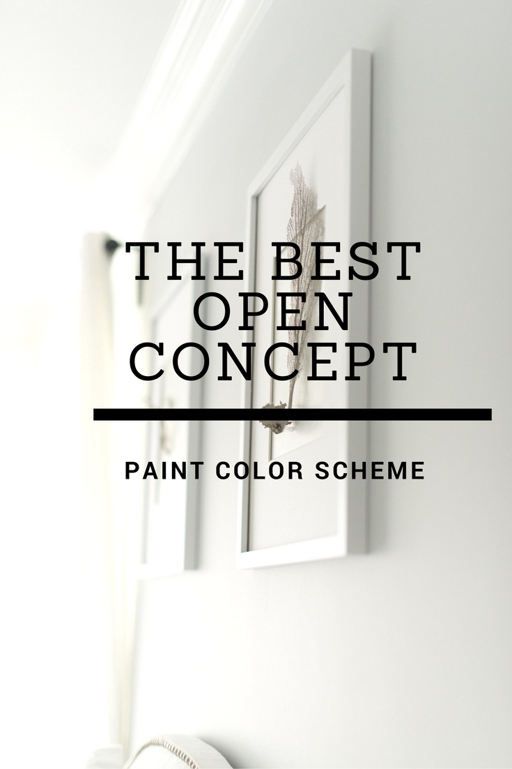 Open Concept Paint Color Scheme