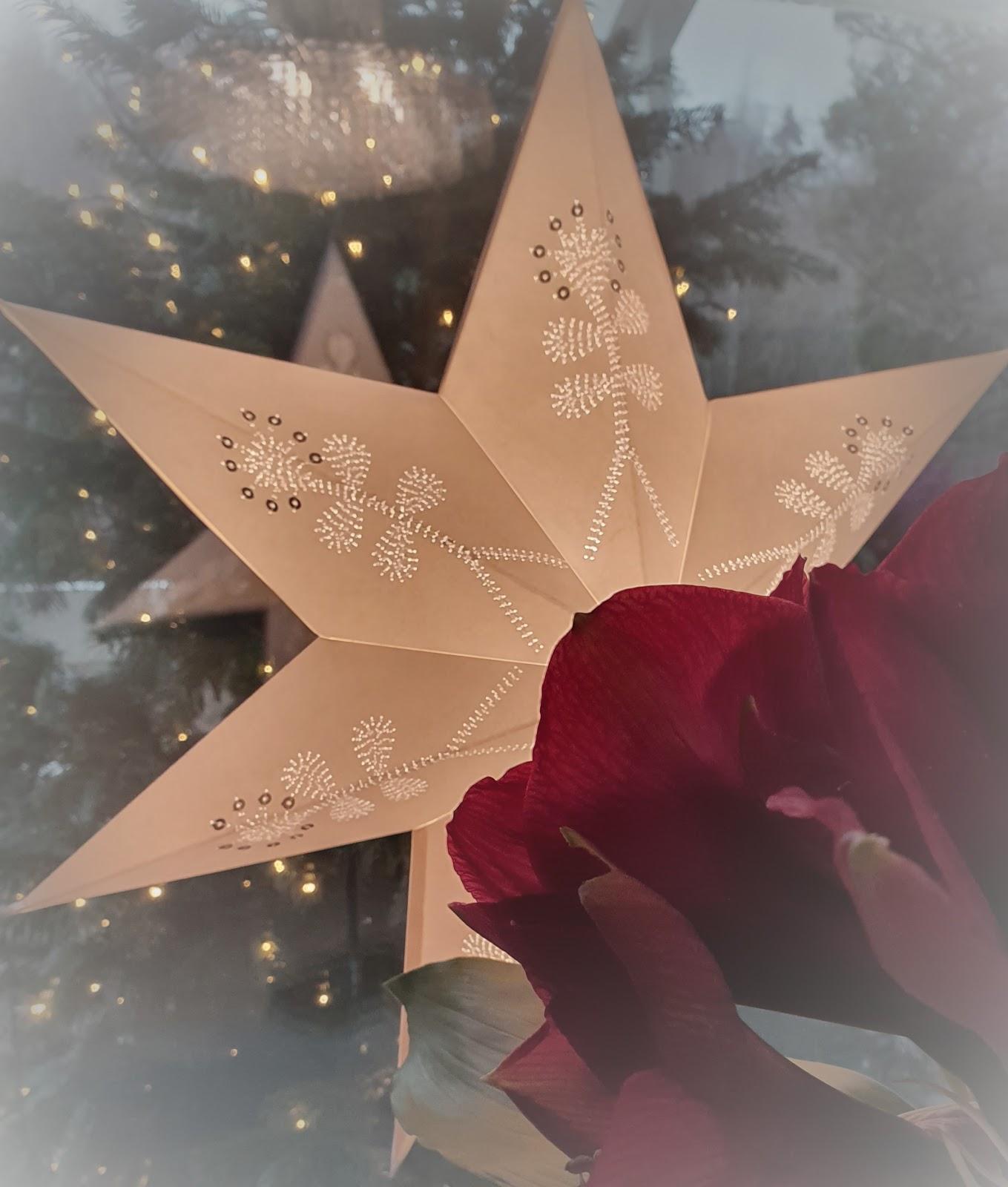 joulutähti ja kuusipuu