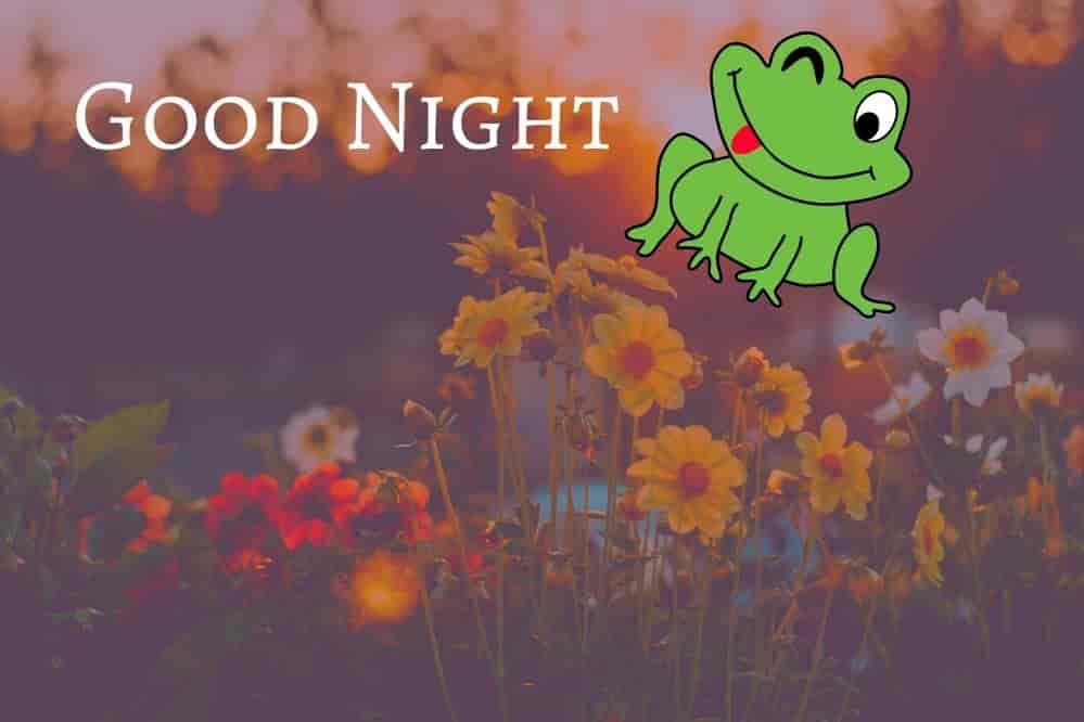 good-night-and-sweet-dream