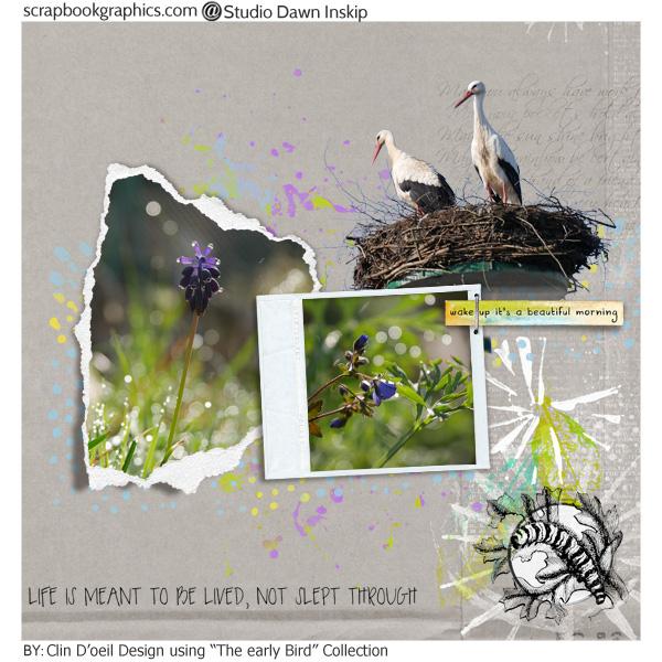 Clindoeil Design; Early bird dawn Inskip