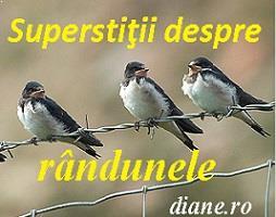 Superstiţii rândunele