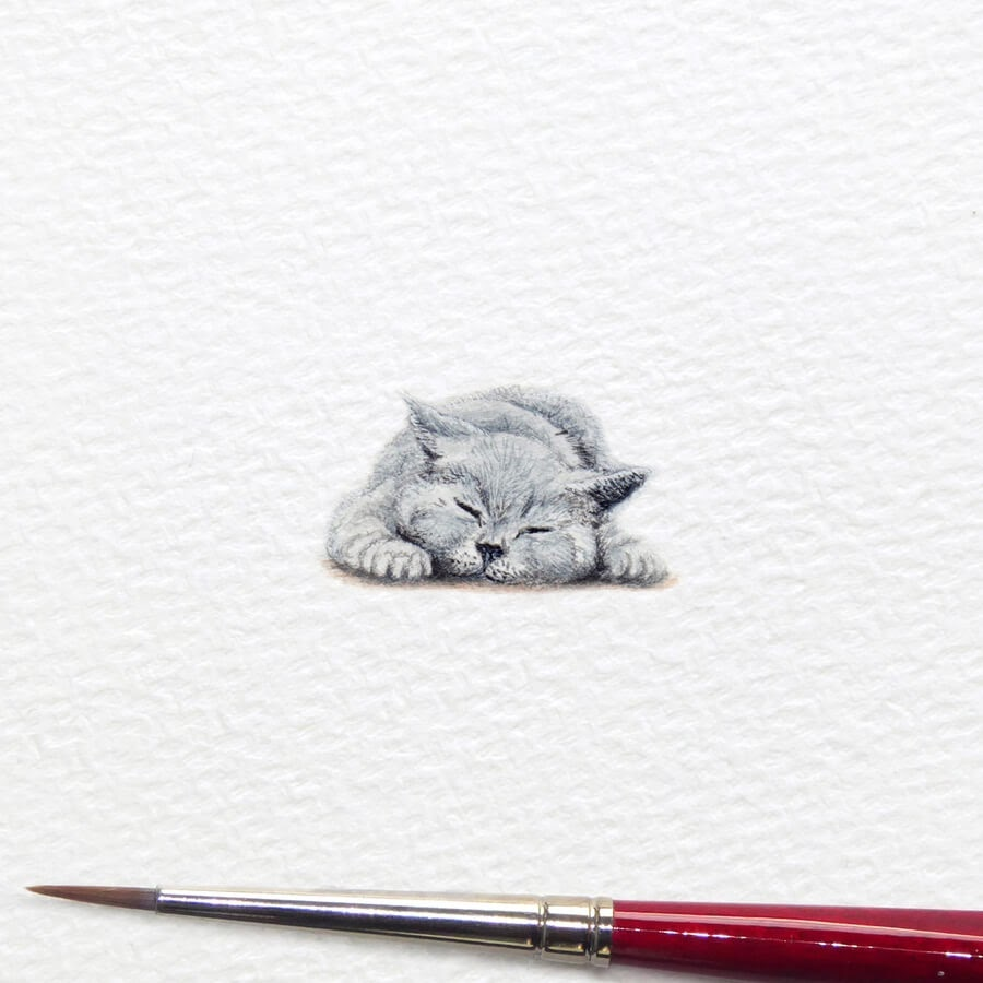 07-Catnap-Kitten-Frank-Holzenburg-www-designstack-co