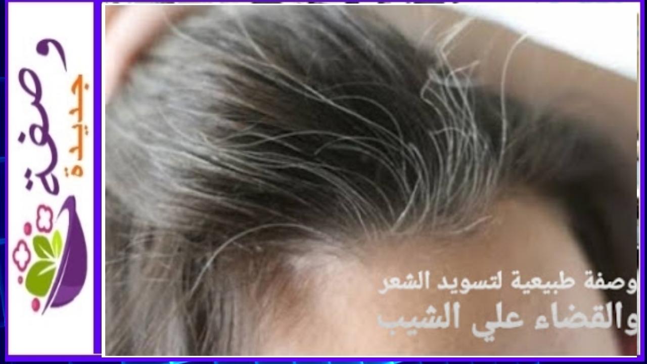 تسويد الشعر بالزيوت،تسويد شعر الابيض طبيعيا، تسويد الشعر بدون صبغة، تسويد الشعر بالأعشاب، تسويد الشعر بالحناء