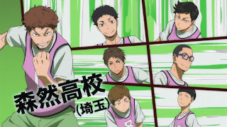 Hellominju.com : ハイキュー!! アニメ 森然高校バレー部 キャプテン 小鹿野大樹 | Ogano Daiki | Haikyū!! Captains PROFILE  | Hello Anime !