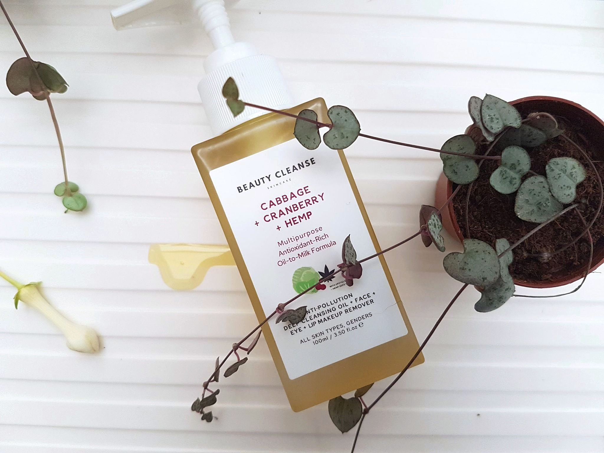 Beauty Cleanse Skincare Cleansing Oil Makeup Remover glass bottle next to a golden puddle of oil, surrounded by string of hearts plants