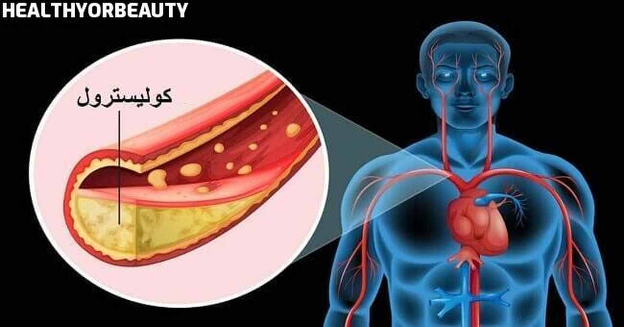 فوائد الكوليسترول للجسم