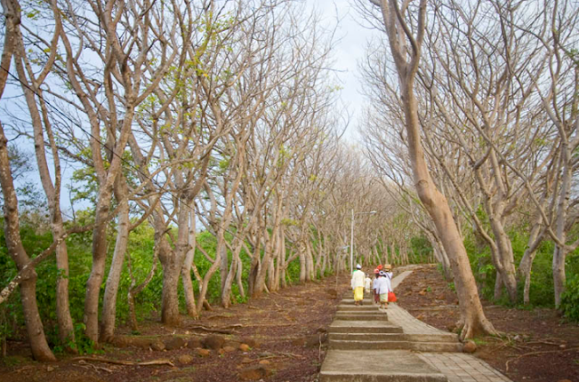West Bali National Park Destinations for Weekend Getaways
