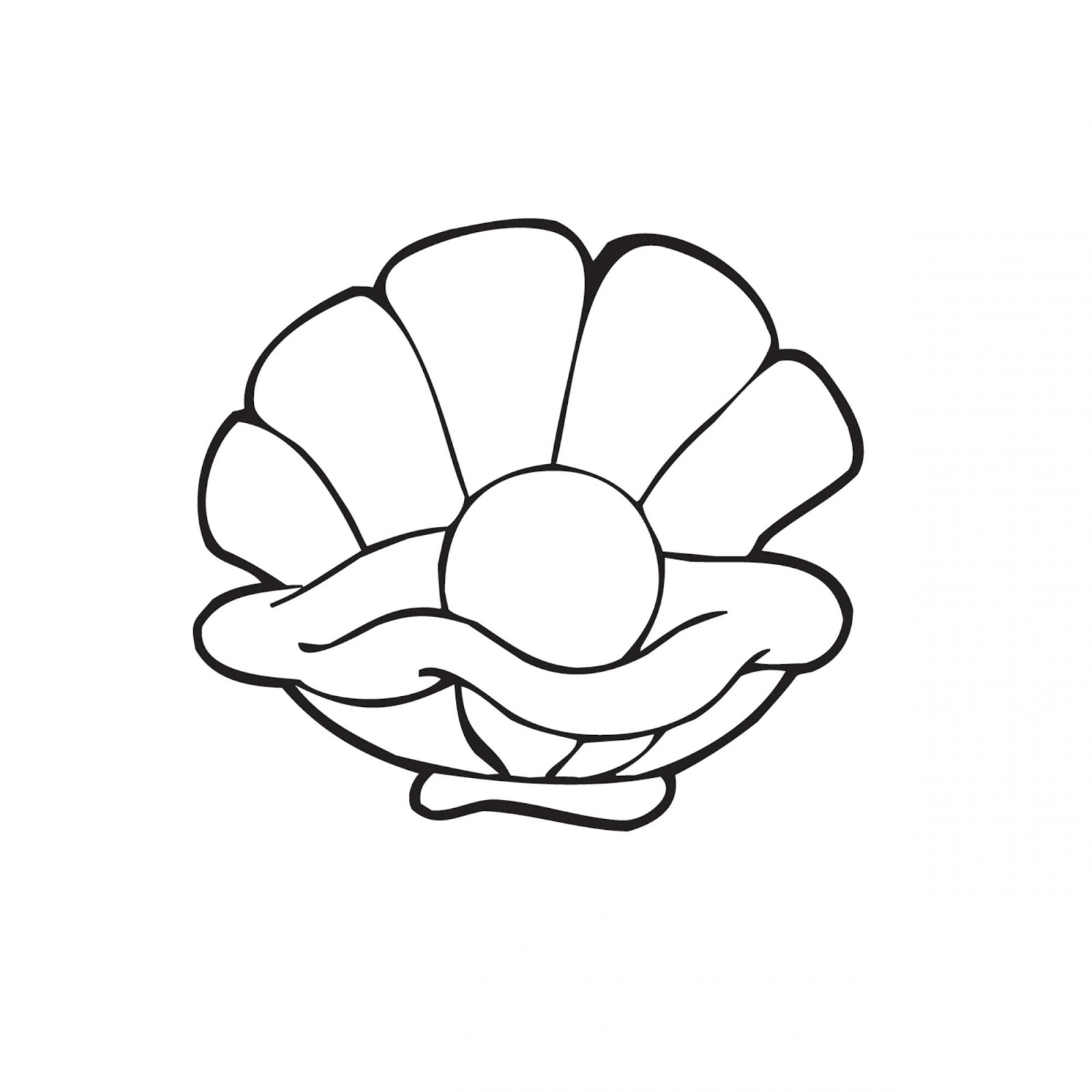 картинка жемчужина в раковине черно белая состоянии