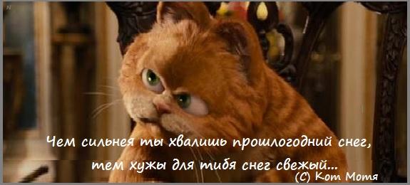 Блог Кота Моти  - Страница 3 DyimK23j2QE