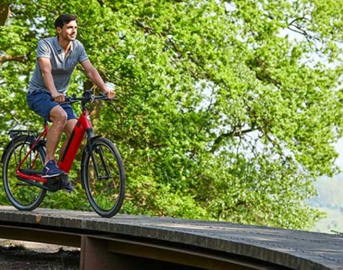 Beste elektrische fiets forenzen Gazelle C8+ e-bike