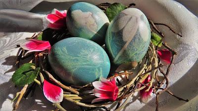 Bojanje jaja u crvenom kupusu s biljem / Light Blue Eggs-dying with red cabbage & plant