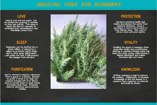 Herb Journal Ultimate Guides To Herbs