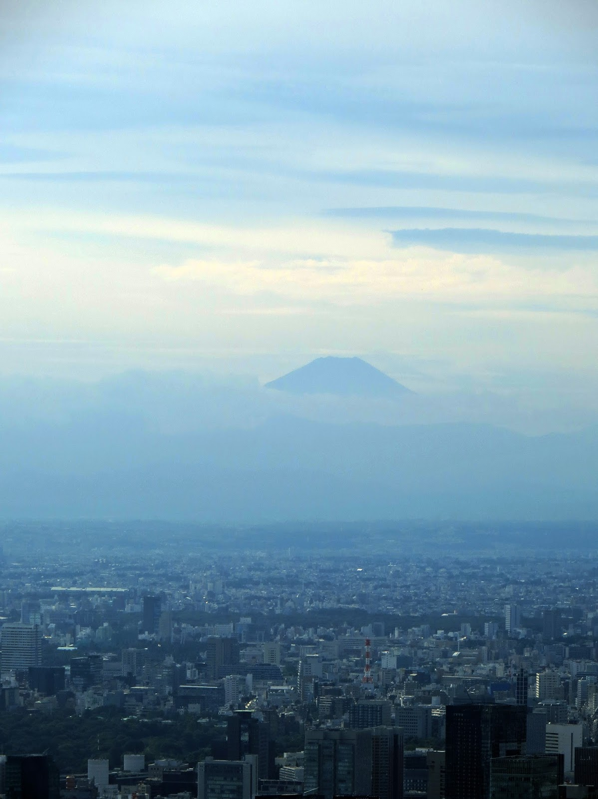 Mt fuji from tokyo Skytree, tower, city center, view, must do tokyo