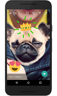 WhatsApp now introduces a new camera feature on iOS that allows a new way to customize and enhance the photos and videos you share with friends and family around the world