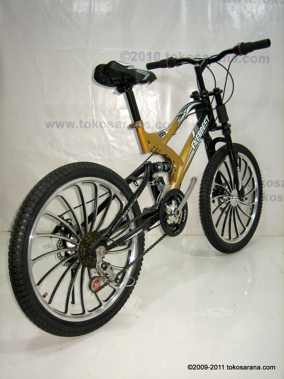 Sepeda Gunung Everbest 20-808 RC Racing 20 Inci ~ News