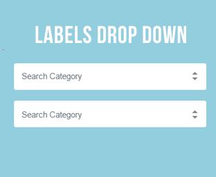 Custom Drop-Down List Styling