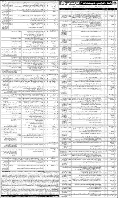 WAPDA Jobs 2019 PTS Form Download Online www.pts.org.pk