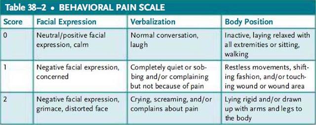 behavioral pain scale