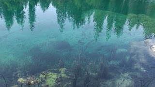 Pensées en se mirant dans le lac vert