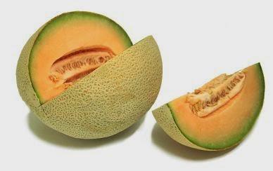 dikarenakan melon gampang tumbuh dan gampang beradaftasi diberbagai jenis dan ketinggian tana Cara Menanam Melon Yang Tepat Dan Baik