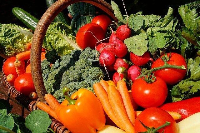 Basket of Fresh Picked Home Grown Vegetables
