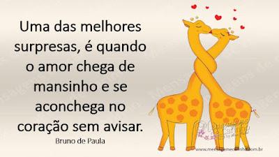 Uma das melhores surpresas, é quando o amor chega de mansinho e se aconchega no coração sem avisar. Bruno de Paula