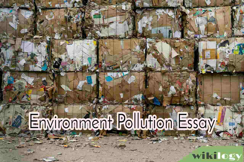 Environment Pollution Essay Composition