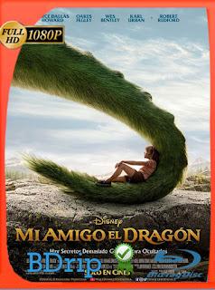 Mi Amigo el Dragón (2016) BDRip [1080p] Latino [Google Drive] Panchirulo