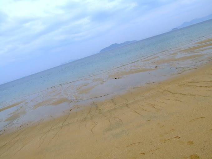 051 #海 #砂浜 #風景 #夏