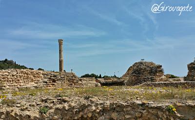 terme antonino cartagine discover tunisia