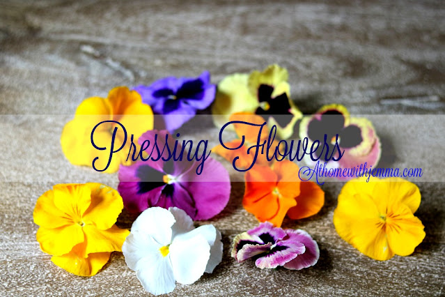 pansies, pressed, flowers, crafts, athomewithjemma, home, decor