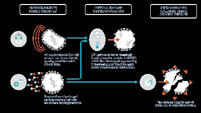 NanoStrike Process