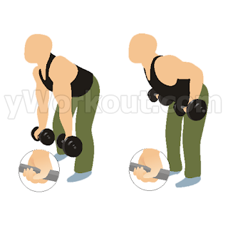 3. Reverse Grip Dumbbell Row