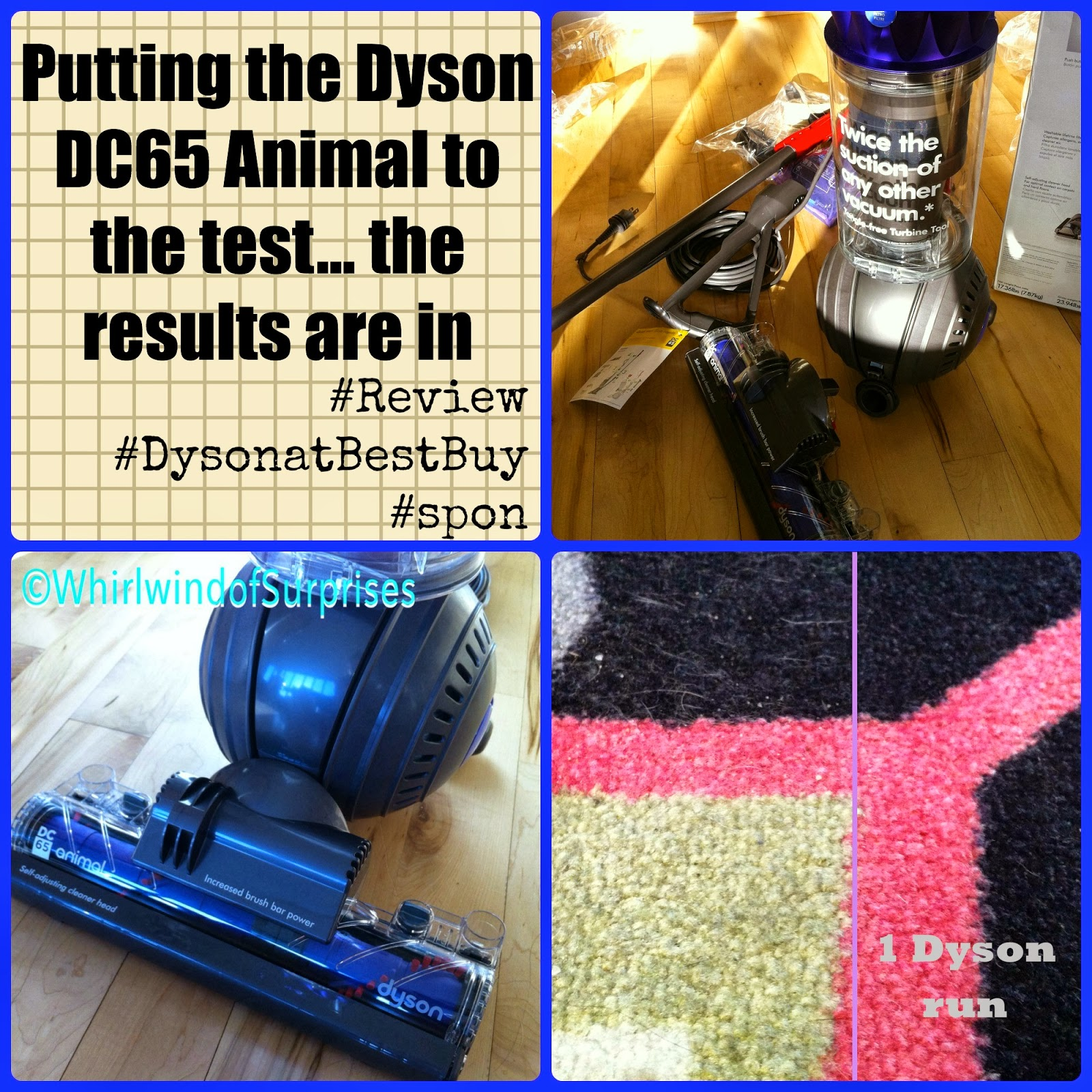 Putting the Dyson DC65 Animal to the test, the results are in, #DysonatBestBuy #review