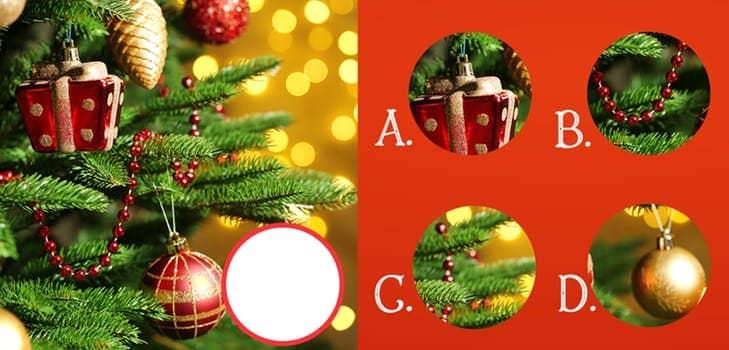 VideoFacts Christmas Puzzle Answers Score 100% - MyNeo💦