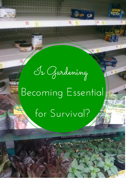 Is Gardening Becoming Essential for Survival
