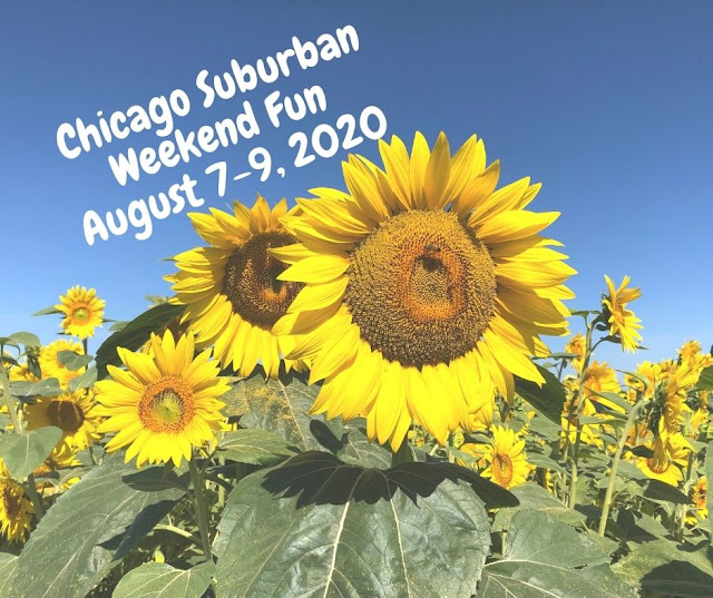 Weekend Windup: 12 Family Fun Events in the Chicago Suburbs August 7 - 9, 2020
