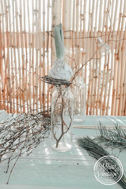 Winterdeko mit Hyazinthen und Zweigen