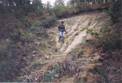 """""""crater"""" de Cando 1994"""