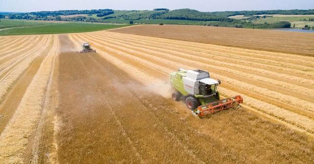 A saját piacainkon verne minket agyon az EU-s agrárpolitika