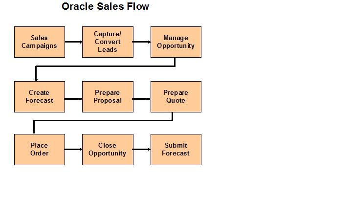 Lead to Order Process Oracle Apps CRM
