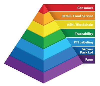 Case Traceability Pyramid