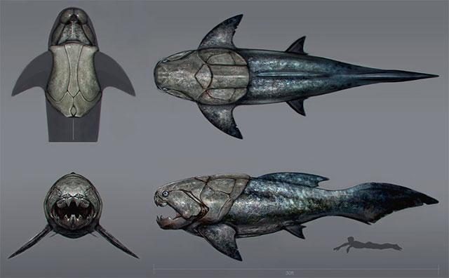 Dunkleosteus Lebih Besar Dari hiu Putih raksasa