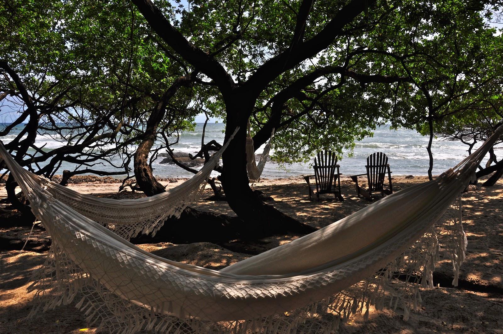 Tamarindo Costa Rica Daily Photo Beach Hammocks Under