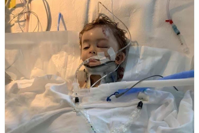 Семья просит молитвенной поддержки: отец и сын борются за жизнь после обрушившегося на Теннесси торнадо