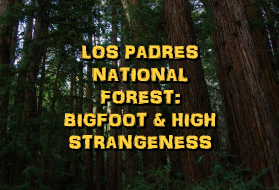 Los Padres National Forest: Bigfoot & High Strangeness