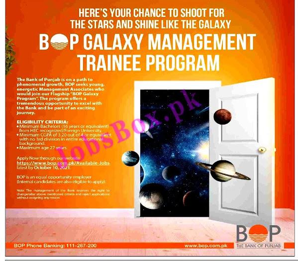 BOP Trainee  Latest Jobs 2021 – Galaxy Management Trainee Program