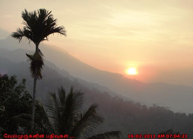 Kerala Munnar Sunrise