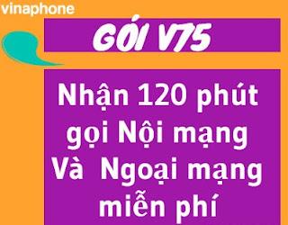 Gói V75 VinaPhone