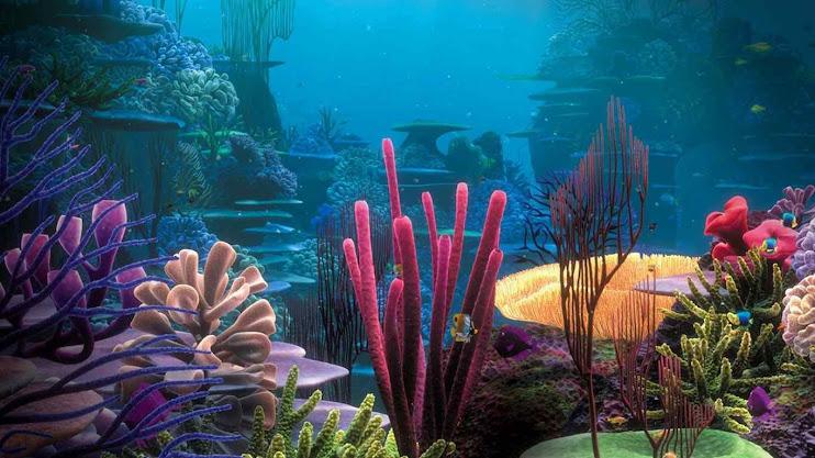 O fundo dos mares contém 85% de vegetais do que a terra, e o CO2 de origem vulcânico é grande fator de desenvolvimento